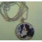 Medailonek s Bernským salašnickým psem a řetízkem