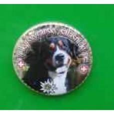 Placka s magnetem a velkým švýcarským salašniským psem