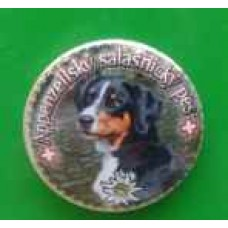 Placka s magnetem a Appenzellským salašniským psem