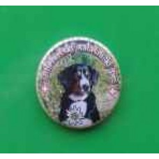 Placka s magnetem a Entlebušským salašniským psem