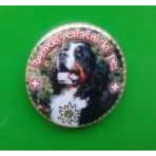 Placka se špendlíkem a Bernským salašnickým psem