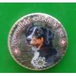 Placka se špendlíkem a Appenzellským salašniským psem