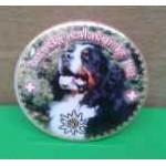 Placka se zrcátkem a Bernským salašnickým psem