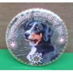 Placka se zrcátkem a Appenzellským salašnickým psem